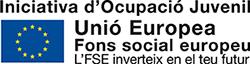 logotip-pfi_Iniciativaocupaciojuvenil1