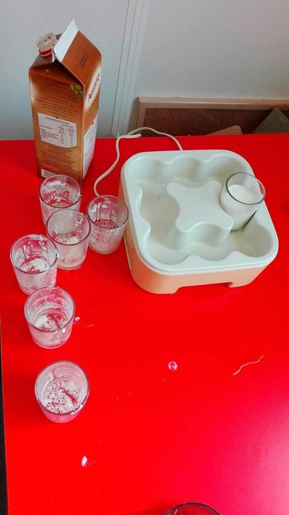 blog-3-7-experiments-bacteris-4