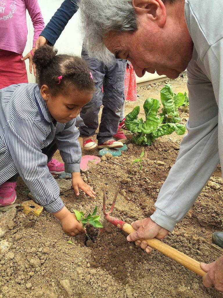 blog-3-7-plantem-verdures-(2)