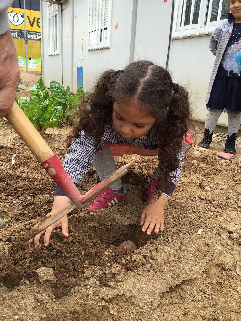 blog-3-7-plantem-verdures-(4)