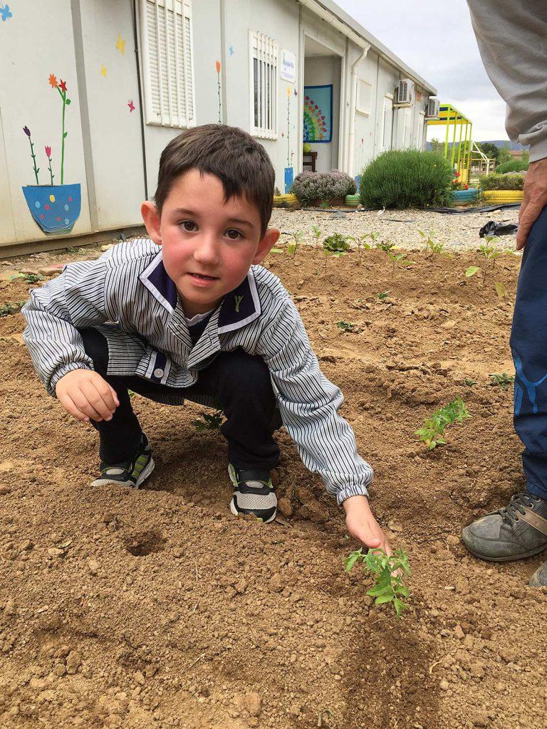 blog-3-7-plantem-verdures-(5)